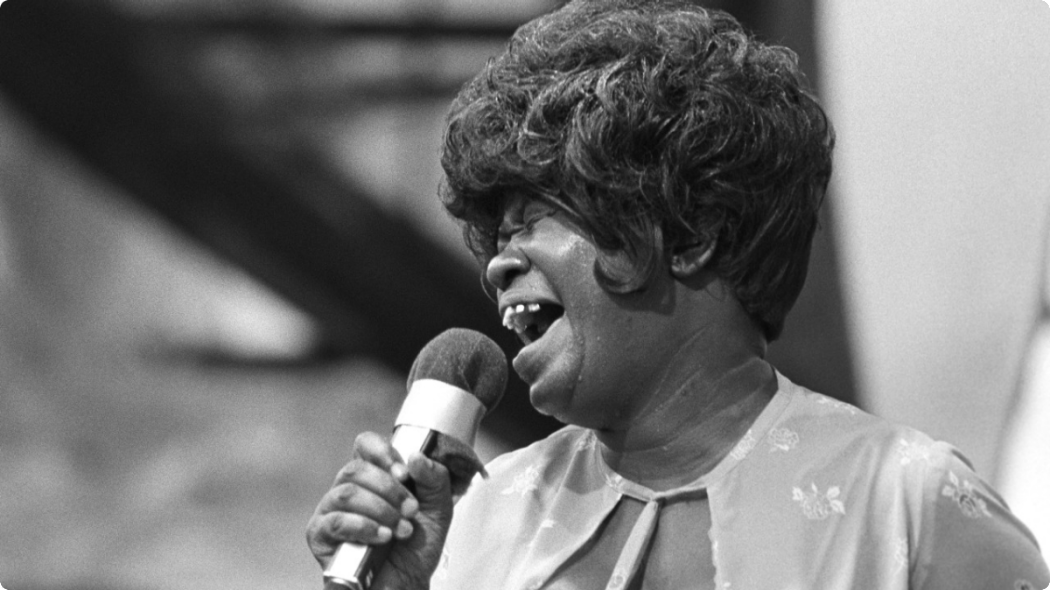 http://thebluesmobile.com/wp-content/uploads/2015/09/092513-national-this-day-black-history-koko-taylor-1050x590.png